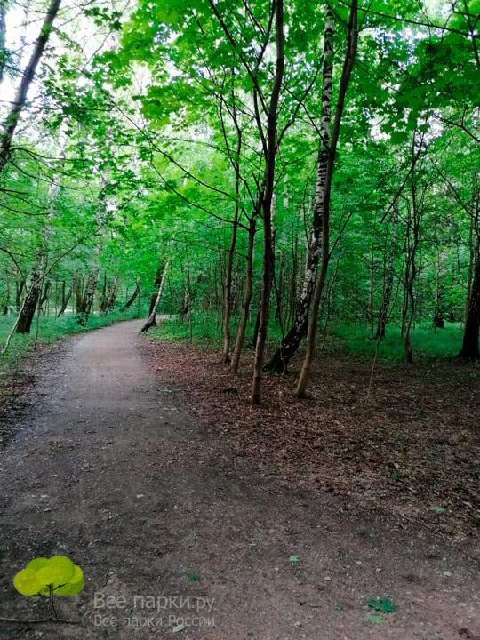 Прогулка и отдых на природе