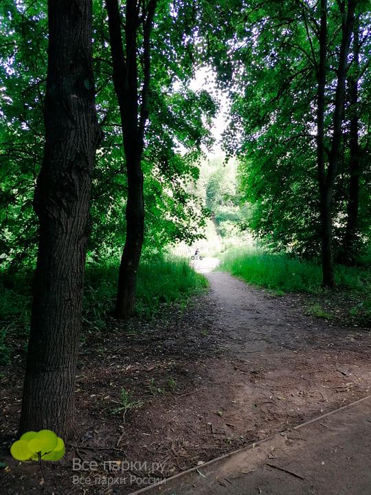 Отдых и ходьба на свежем воздухе